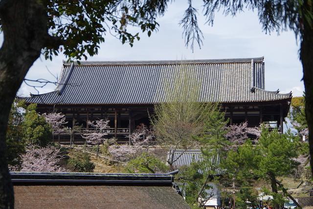 春の宮島世界遺産厳島神社・宮島水族館(みやじマリン)24