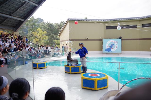 春の宮島世界遺産厳島神社・宮島水族館(みやじマリン)10