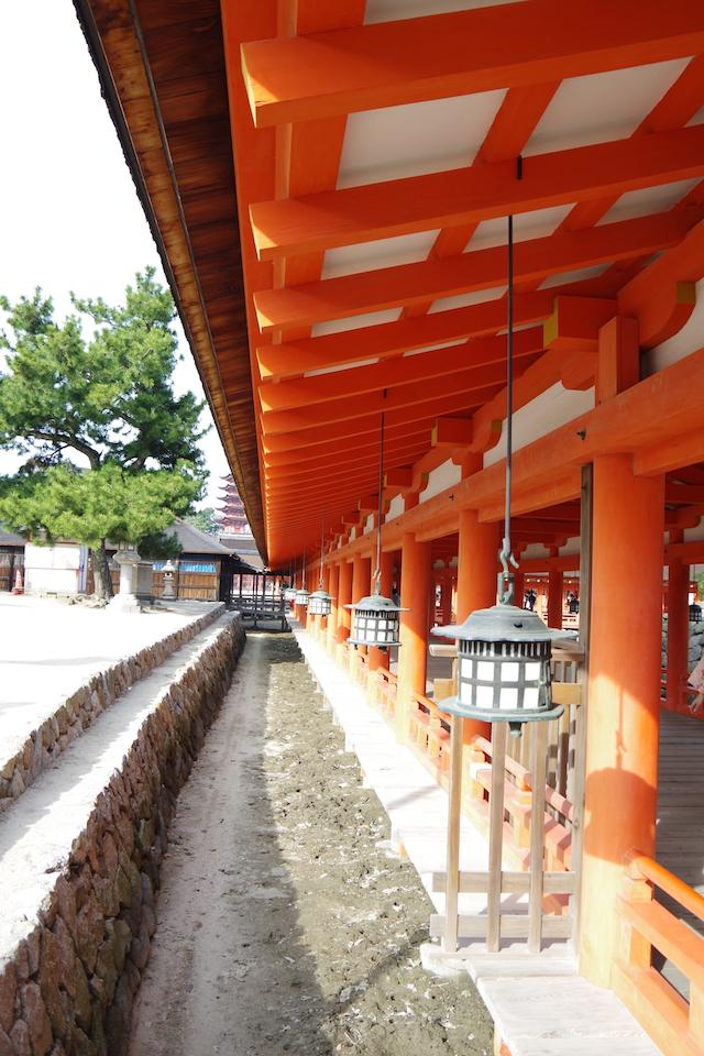 春の宮島世界遺産厳島神社・宮島水族館(みやじマリン)25